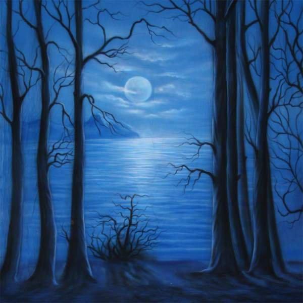 Walimex pro Stoffhintergrund 'Moonlight', 3x6m